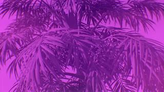 Max Styler - Bulletproof (feat. Nevve) [Lyric Video] Dim Mak Records