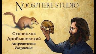Антропология: Purgatorius. Станислав Дробышевский