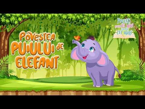 Povestea  puiului de elefant  – Anda Niculina Pittis – Povesti pentru cei mici si pentru cei mari  – Cantece pentru copii in limba romana