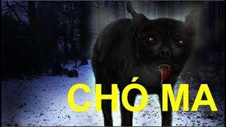 Bí Ẩn Chó Đen To Lớn Có Đôi Mắt Phát Sáng Trong Đêm Tối ĐÁNG SỢ Nhất...