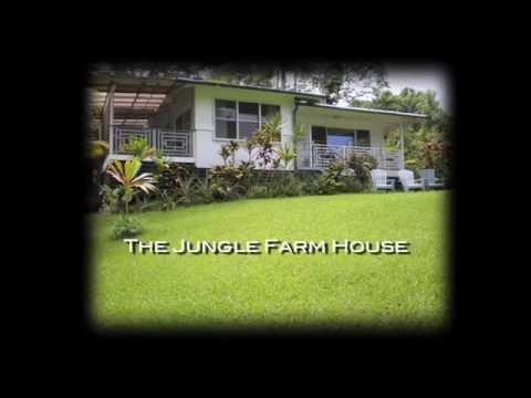 THE JUNGLE FARM HOUSE IN PUNA, HAWAII