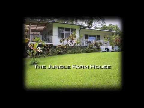 THE JUNGLE FARM HOUSE IN PUNA, HAWAII