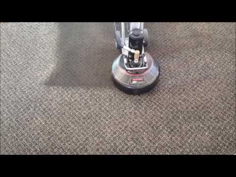 Best Carpet Cleaning Service in Carson Valley Nevada