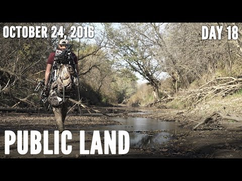 Public Land Day 18: Reading Wind and Thermals | Midwest Whitetail