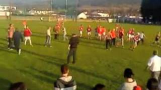 hurling supporter attacks referee (VIDEO NOT SIDEWAYS)