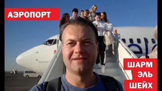 Аэропорт Шарм эль Шейх что делать по прилету