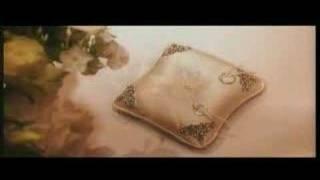 MUSLIM WEDDING - Shiraz & Anbreen - SHAADI VIDEOGRAPHY