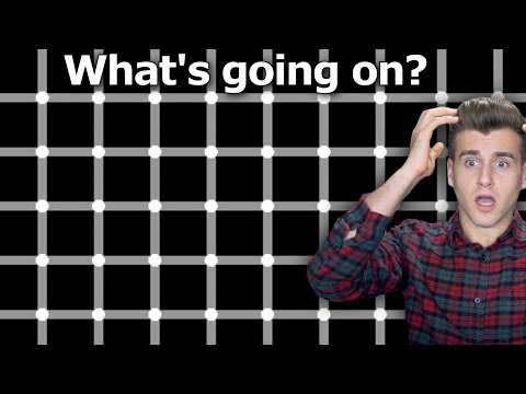 This Optical Illusion Test Will Make You Question Reality