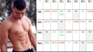 How to Start Trainning Calisthenics+Get your Workout Plan Free ( beginner guide)