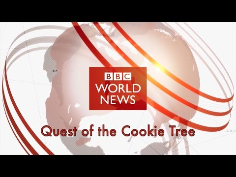 BBC World News Special Documentary-Quest Of The Cookie Tree