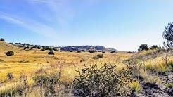 SOLD | 39.29 Acres w/ Rolling Hills and Wildlife in Las Animas County, Colorado