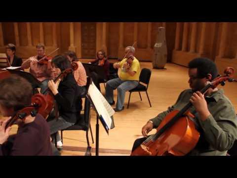 Meet the Toledo Symphony Orchestra