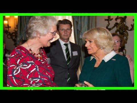 Breaking News | Volunteer has royal approval