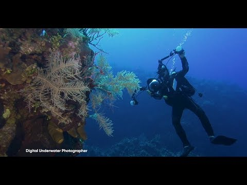 Introduction to Dry Suit Diving