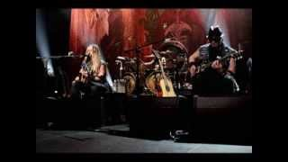 Watch Zakk Wylde Wont Find It Here video