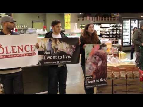 DxE Vancouver's Day of Action: Whole Foods and the Humane Lie