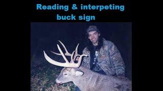 READING & INTERPRETING BUCK SIGN