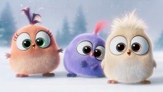 Angry Birds вітають зі Святами!