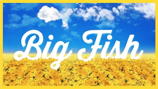 Big Fish Australia - Preview