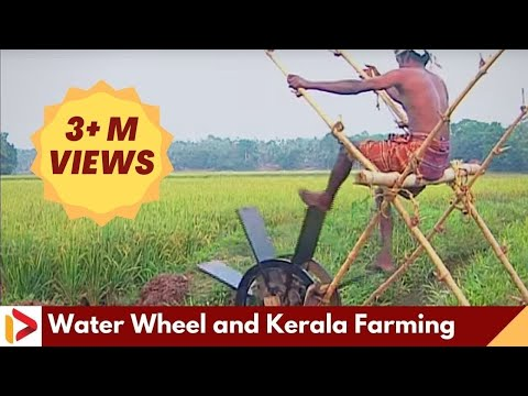Farmer Treading Water Wheel