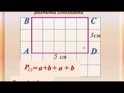 Видеоурок как найти периметр прямоугольника