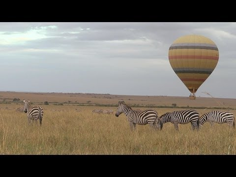 Faces Of Africa - Messengers of Nature 1 & 2