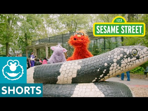 Sesame Street: Murray Goes To The Zoo