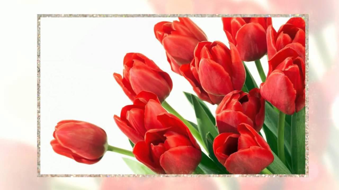 1 канал поздравление с 8 марта