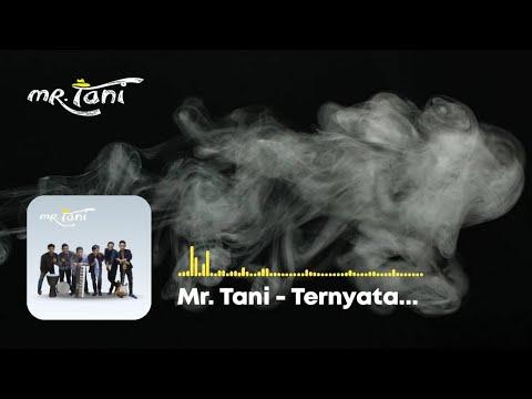 Mr  Tani - Ternyata..... (Official Audio)