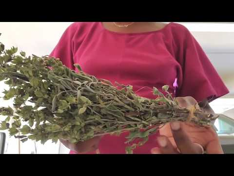 How to make smudge sticks from fresh sage