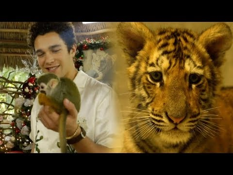 Austin Mahone - Baby Tiger and Monkeys in Miami