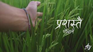 Prashastai || Official Lyric Video || Sophia/Adrian