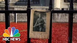 Armistice Day London: Poppies Honor WWI Soldiers | NBC News