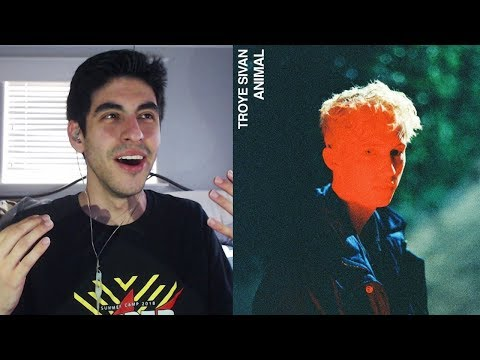 Animal - Troye Sivan [REACTION]