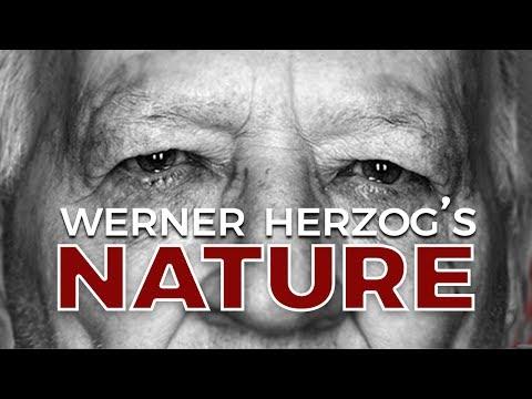 Grizzly Man: Werner Herzog