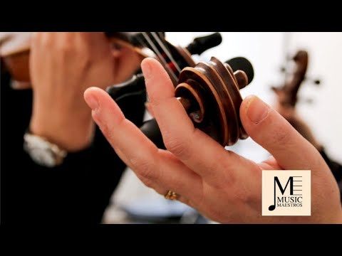Violin Lessons Southampton, Hampshire | Music Maestros