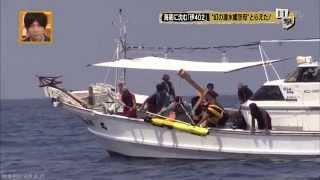 """2015年8月16日 日本テレビで放送された「真相報道 バンキシャ!」、「""""..."""