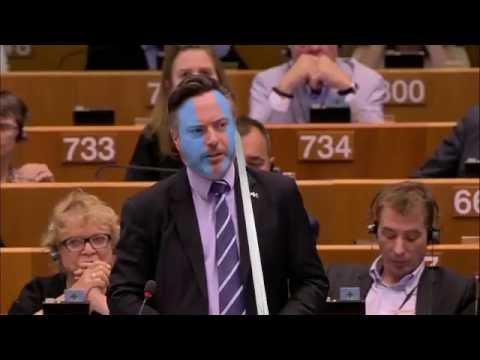 Braveheart Version: Alyn Smith Scottish MEP in passionate plea to European Parliament