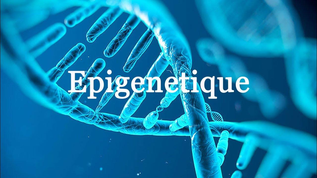 C'est quoi L'épigénétique?