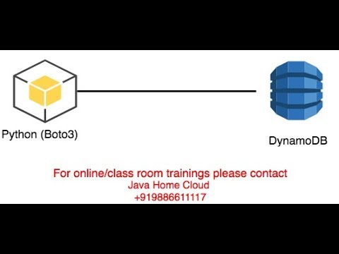 boto3: put item into dynamodb table