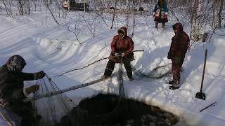 Древний метод рыбалки хантов. Метод называется Батать.