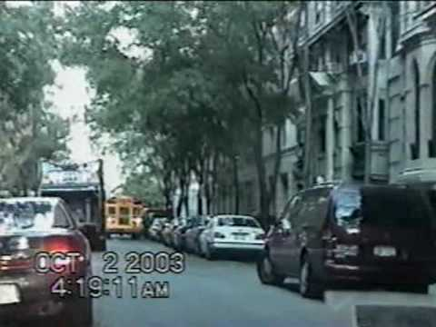 TREE - CHAT HAGS LOOSE IN MANHATTAN - PART #1 OF 3