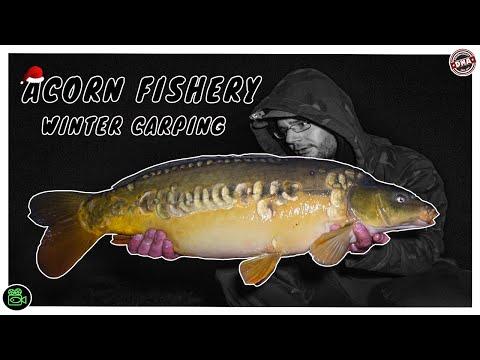 ACORN FISHERY **Carp Fishing**