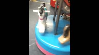 Popular Carousel & Kiddie ride videos