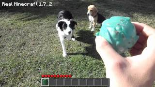 Repeat youtube video Real Life Minecraft - PSYCHO PUPPIES (Realistic Minecraft)
