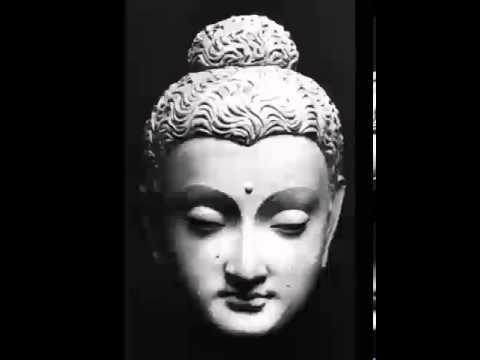 Rebirth and Kamma, Lecture by Bhikkhu Bodhi, Dhamma, Karma, Dharma, Buddhism