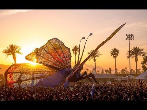 Coachella 2015: Thank You