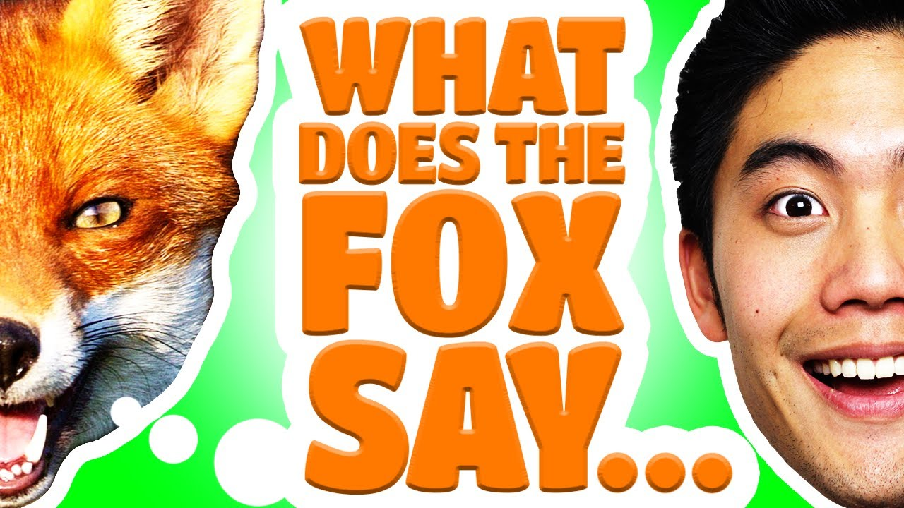 Dear ryan what does the fox say youtube