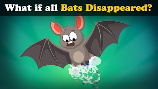 What if all Bats Disappeared? | #aumsum #kids #science #education #children