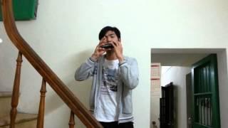 Đường chúng ta đi (OST Tây du ký) - Test Ocarina OT - 01